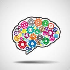 脳の機能の図解
